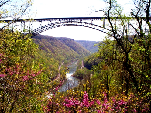 NRG bridge view in Spring.JPG